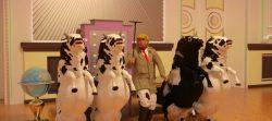 رقصنده با گاو