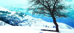 لالایی بر فراز کوههای برفگیر