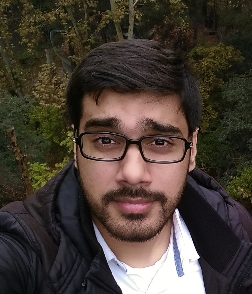 سید محتشم علی نقوی